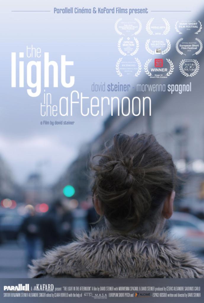 Light in the afternoon_steiner